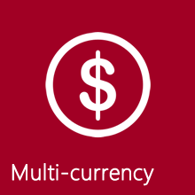 Multi-currency facility